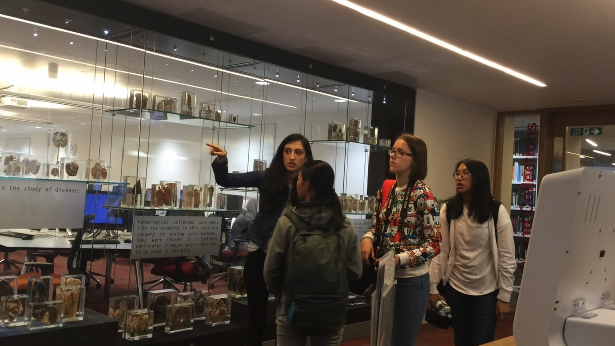 students on the medical preparation course visiting medical laboratory