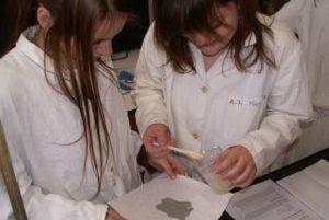summer school students chemistry workshop